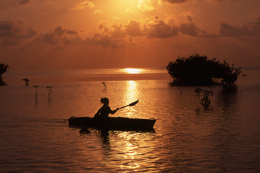 Kayak the Florida Keys