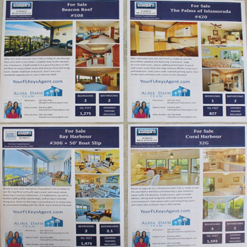 sample-flyers-brochures-etc4
